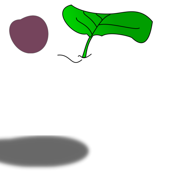 Tshirt Plum Pattern PNG Clip art