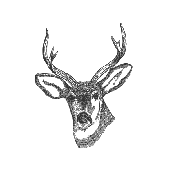Deer Head PNG images