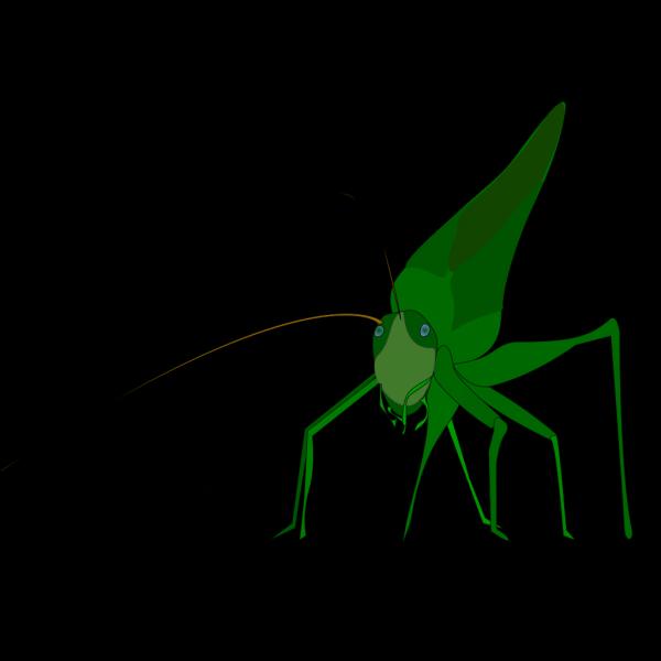 Emeza Grasshopper PNG images