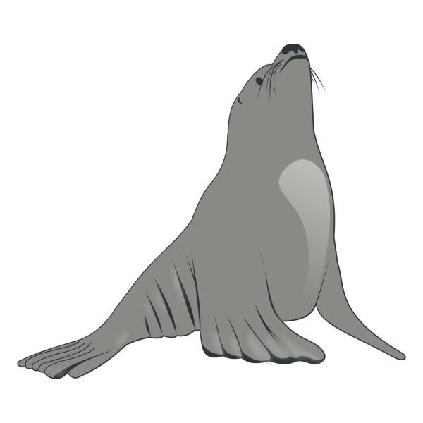 Valessiobrito Sea Lion PNG images