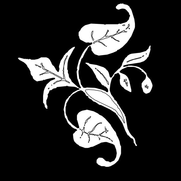 Leaf Decoration PNG images