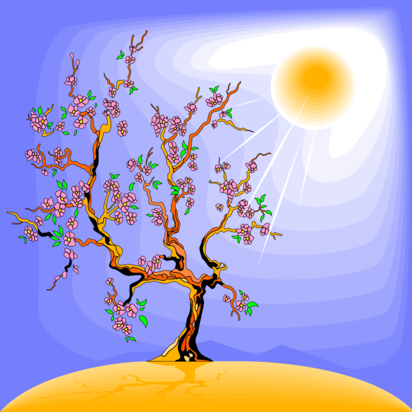 Tree Silhouettes PNG Clip art