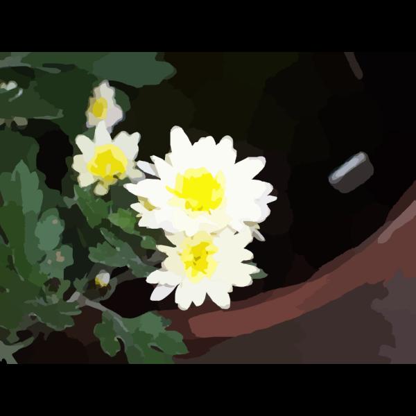 Black and White Daisy Clip art