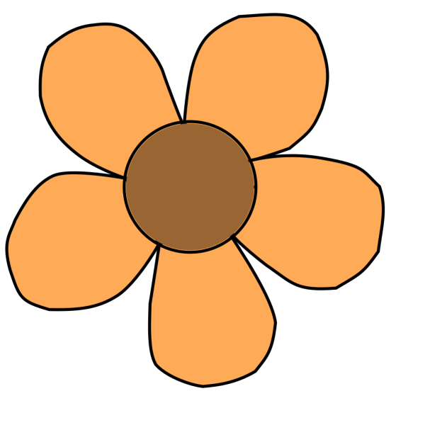 Color Bloom PNG images