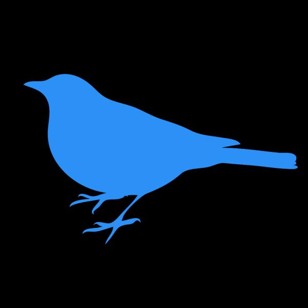 Baby Blue Bird PNG Clip art