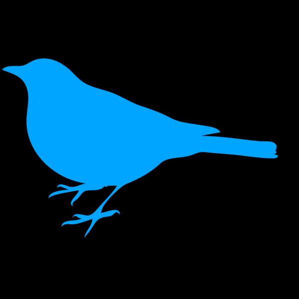 Bird Silo PNG Clip art