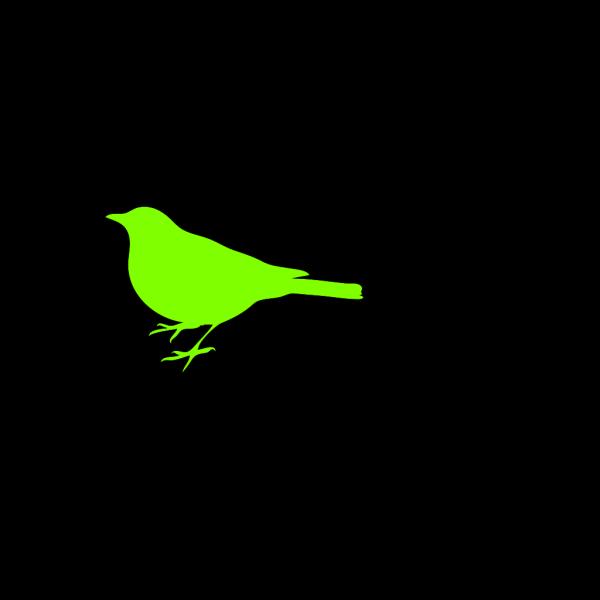 Tiny Green Bird PNG Clip art