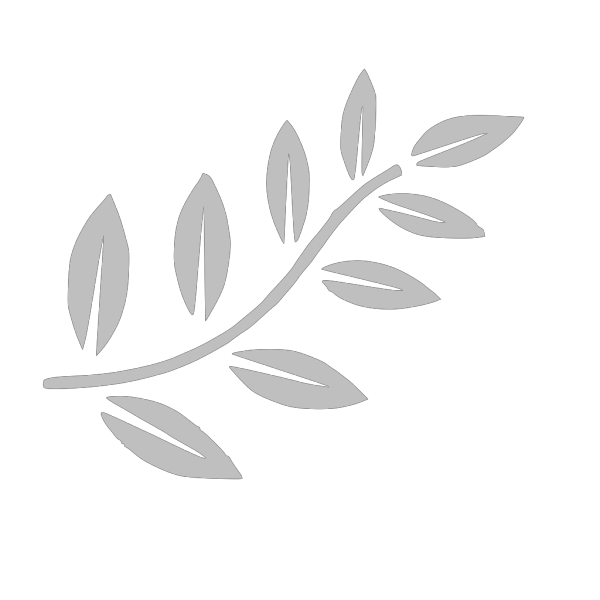 Brown Bird On Branch PNG icons