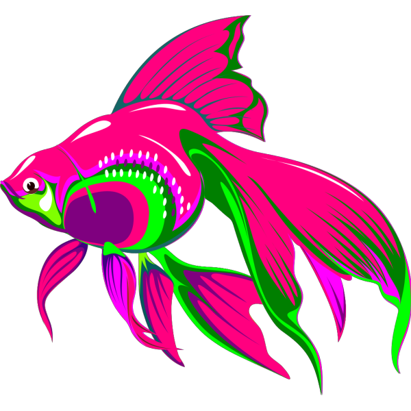 Gold Fish PNG images