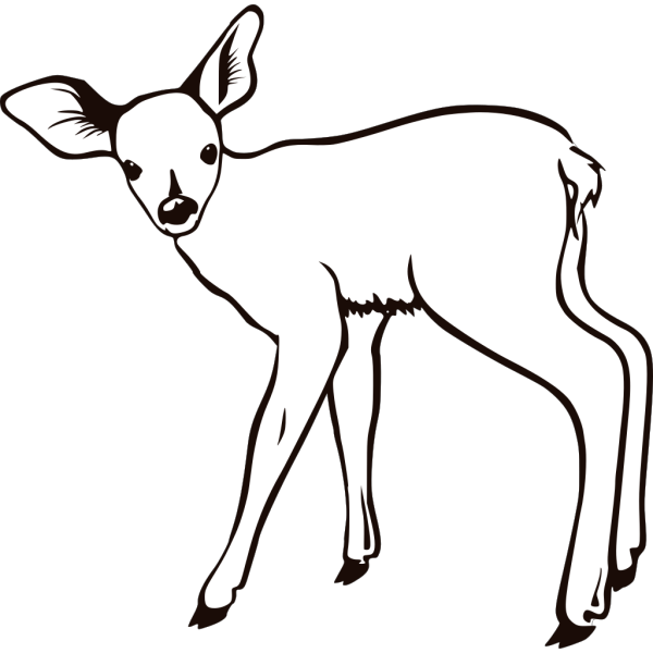 Fawn Outline PNG Clip art