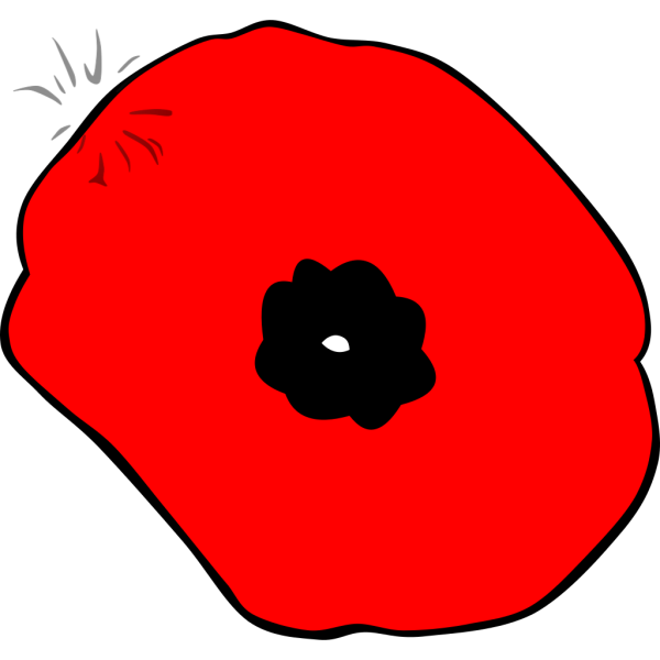 Poppy Remembrance Day