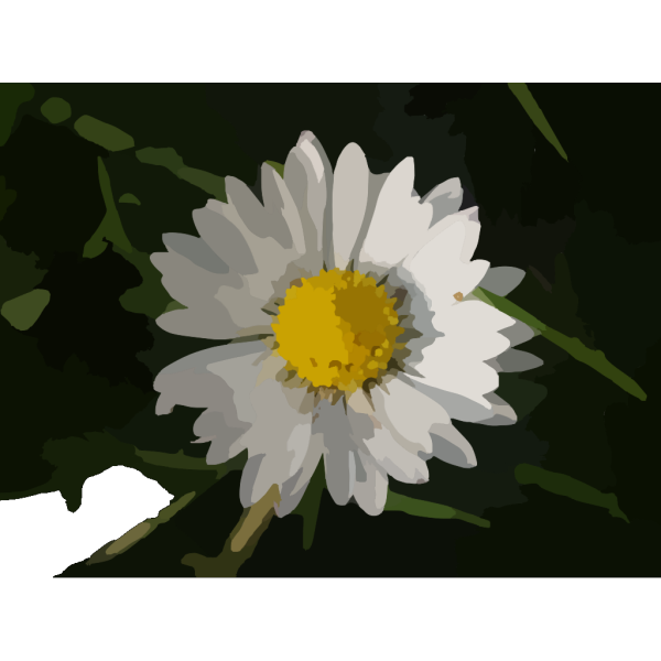 G Daisy PNG images