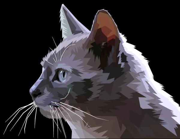 Edit Profile PNG Clip art