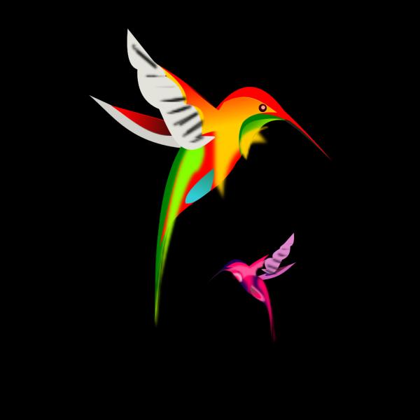 Colibri PNG Clip art