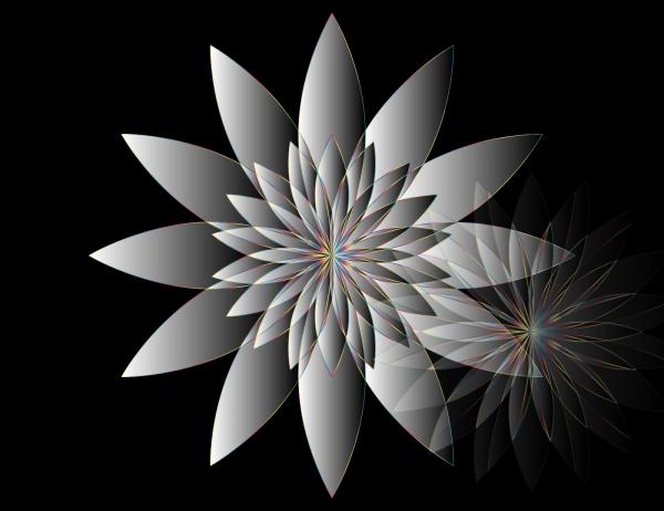 Grey Eu PNG Clip art