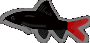 Aquarium Fish Silhouette PNG Clip art