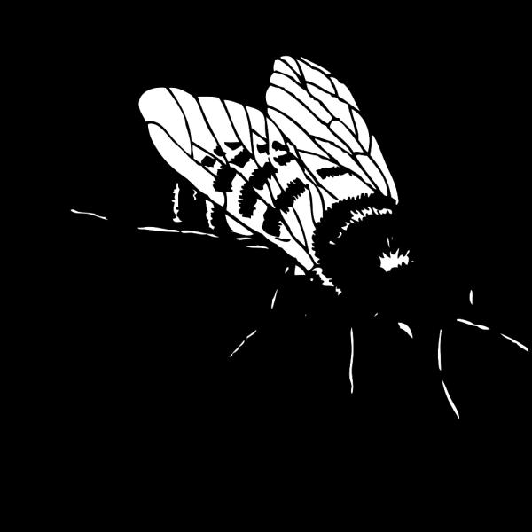 Bumble Bee PNG Clip art