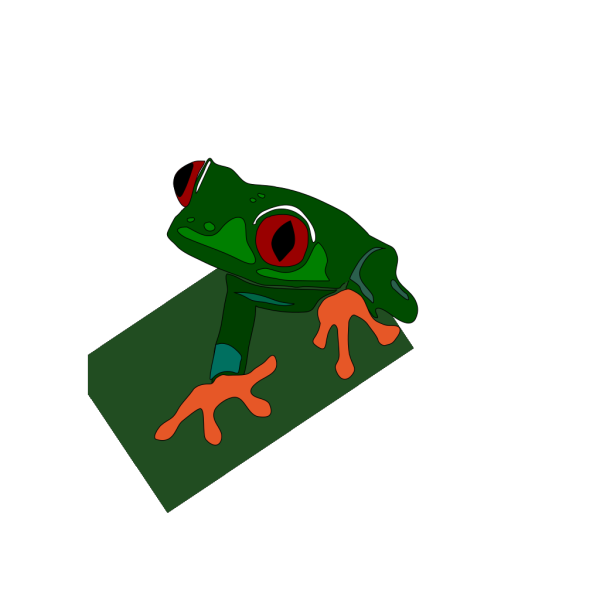 Red-eye Frog PNG Clip art
