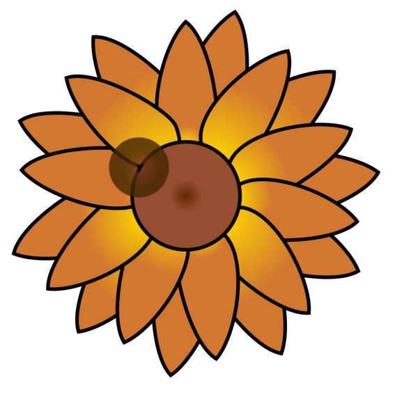 Back Of A Sunflower PNG Clip art