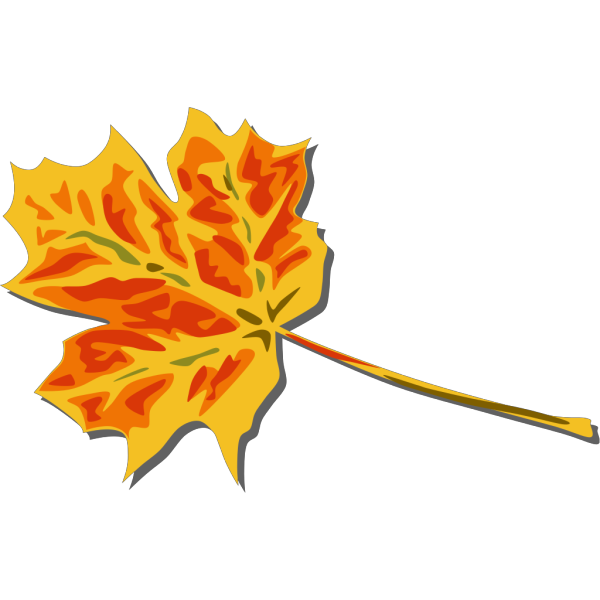 Fall Coloured Leaf PNG images