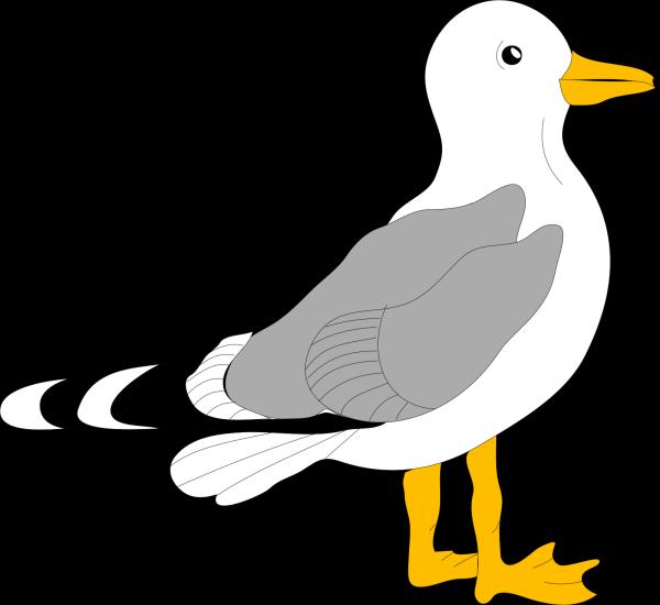 Gull PNG Clip art