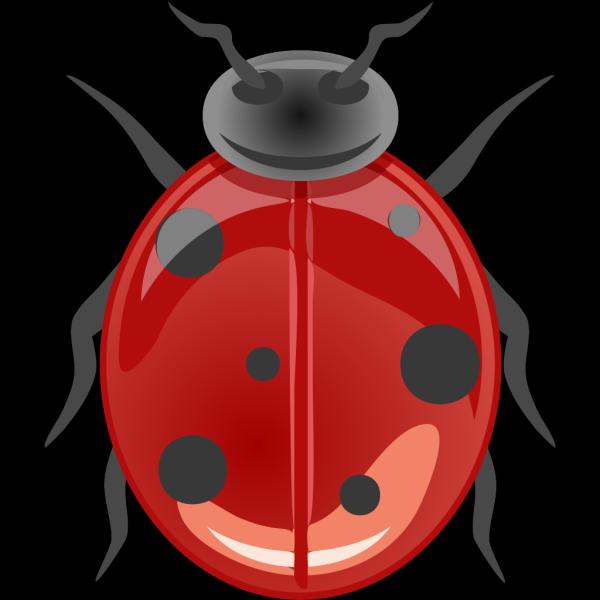 Ladybug 6 PNG Clip art
