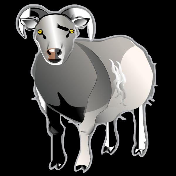 Sheep Md V PNG Clip art