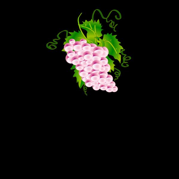 Grapes PNG Clip art