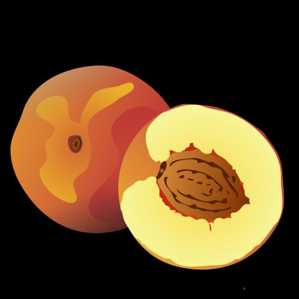 Peach PNG Clip art
