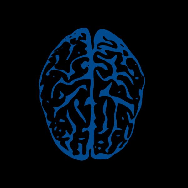 Brain PNG Clip art