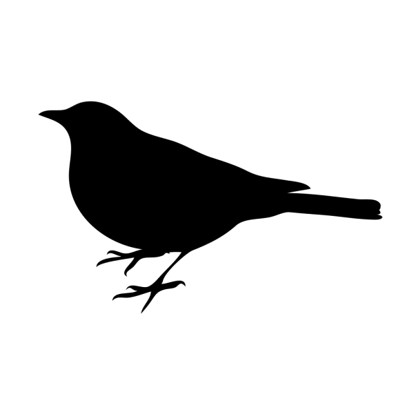 Bird Silhouette Small Black PNG Clip art