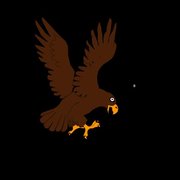 Eagle 15 PNG Clip art