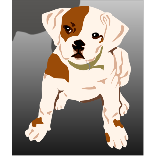 Bulldog Puppy PNG Clip art