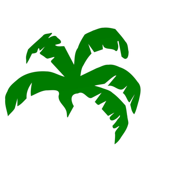 Plam Tree PNG Clip art