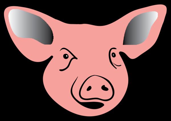 Pig 6 PNG Clip art