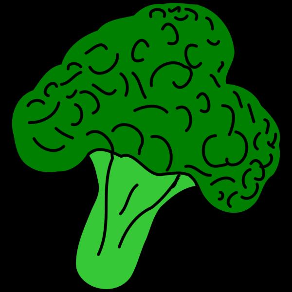 Broccoli PNG Clip art