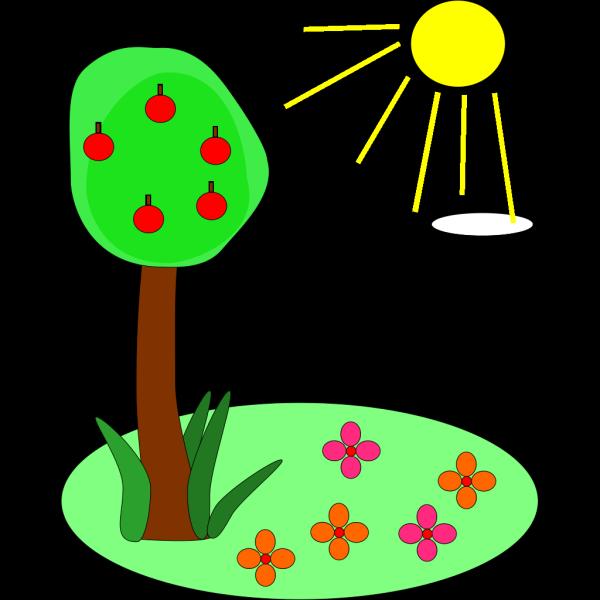 Sun Tree Flowers PNG Clip art