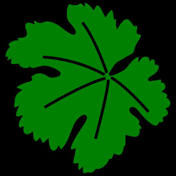 Vine-leaf PNG Clip art