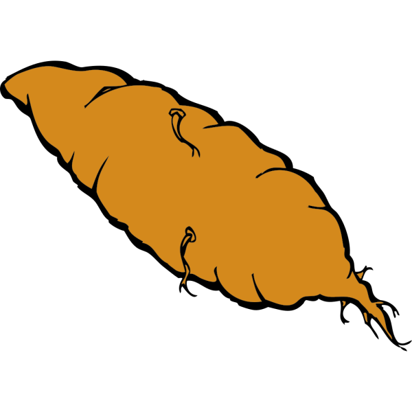 Yam Sweet Potato Vegetable PNG images