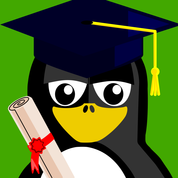 Penguin With A Shirt PNG Clip art
