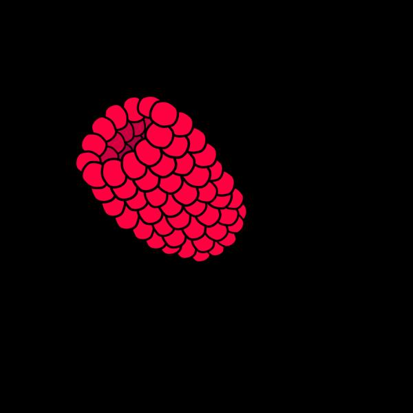 Steve Karg PNG Clip art
