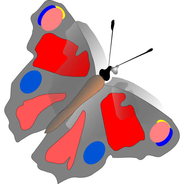 Colorful Butterfly  PNG Clip art