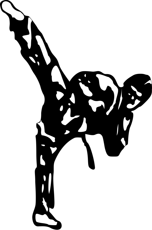 Karate PNG Clip art