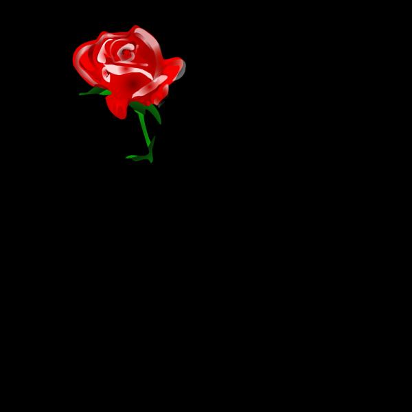 Redrose PNG Clip art