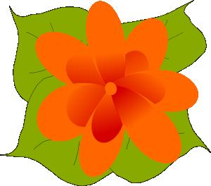 Kvetina PNG images