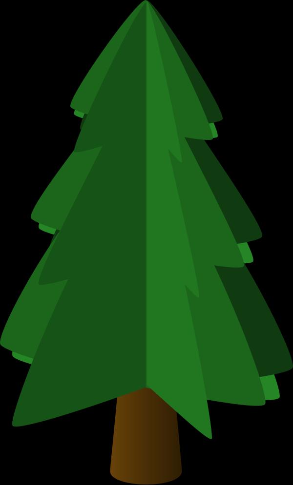 Fir Tree PNG Clip art