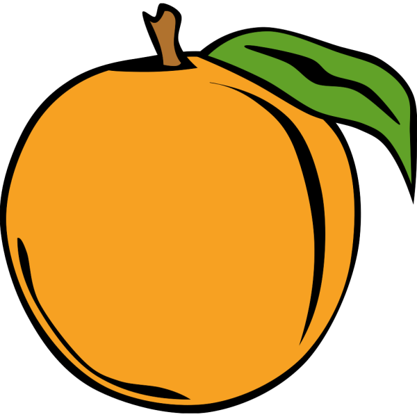 Fruit Orange PNG Clip art