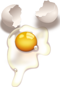 Egg Uncooked PNG Clip art