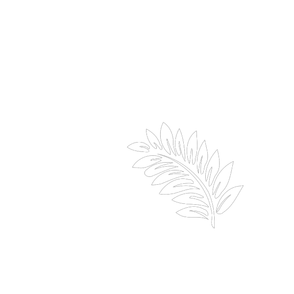 Fern PNG Clip art