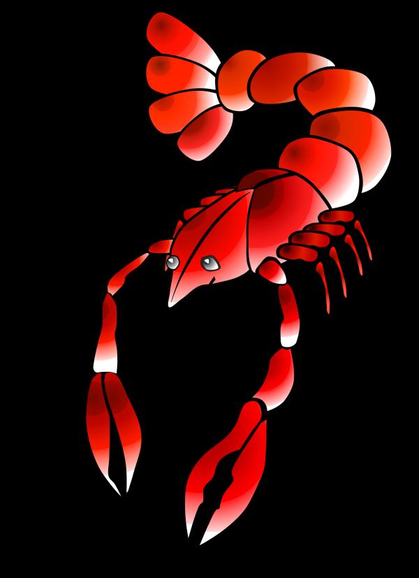 Crawfish 4 PNG Clip art